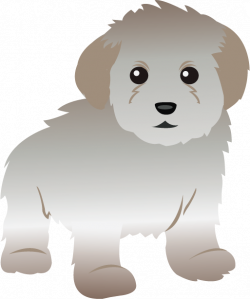 Maltese clipart toy poodle