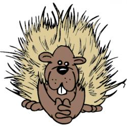 Porcupine clipart cartoon