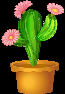 Pot Plant clipart cactus plant