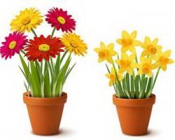 Flowerpots clipart bright flower