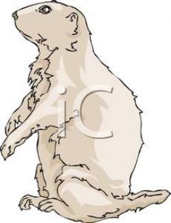 Prairie Dog clipart Prairie Clipart