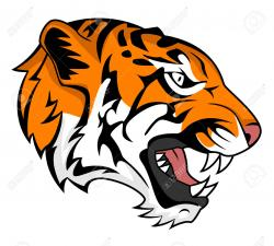 Bengal clipart tiger roar