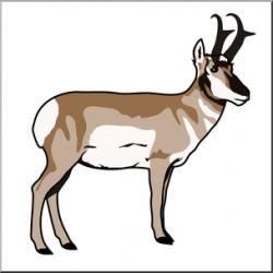 Gazelle clipart pronghorn antelope