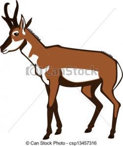 Antelope clipart pronghorn antelope