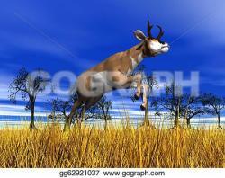 Pronghorn Antelope clipart gemsbok