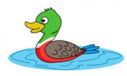 Water clipart mallard duck