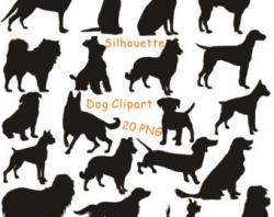 Bloodhound clipart labrador