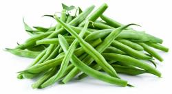 Pulse clipart green bean