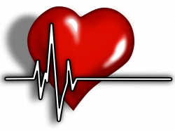 Rate clipart heart monitor