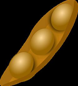 Bean clipart