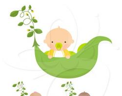 Pulse clipart sweet pea