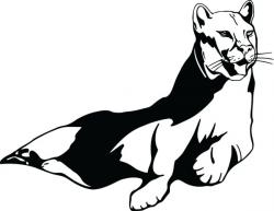 Puma clipart the wild