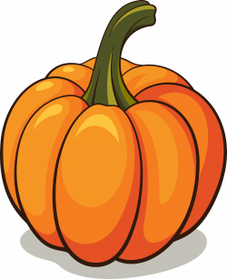 Squash clipart orange objects