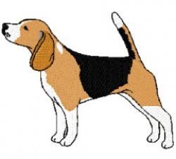 Beagle clipart beagle dog