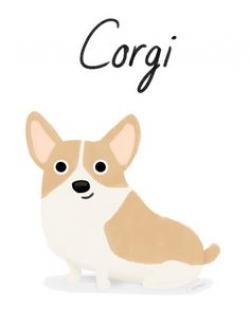 Corgi  clipart cute