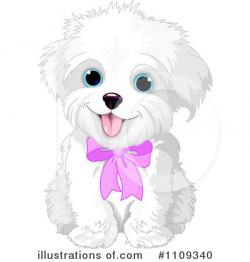 Maltese clipart puppy