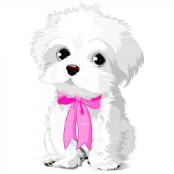 Maltese clipart dog grooming
