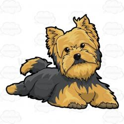Yorkies clipart puppy