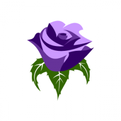 Purple Rose clipart