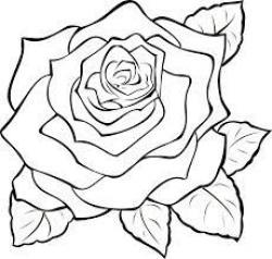 White Rose clipart svg