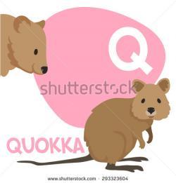 Quokka clipart