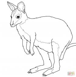 Wallaby clipart black and white