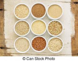 Quinoa clipart sorghum