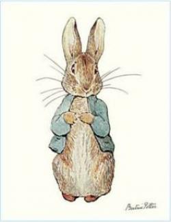 Carrot clipart peter rabbit