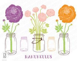 Ranuncula clipart mason jar flower