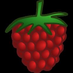 Rapsberry clipart
