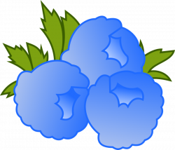 Blueberry clipart blue raspberry