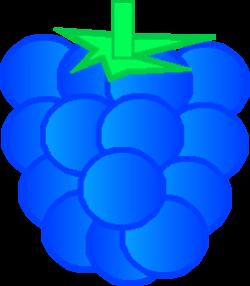Raspberry clipart blue raspberry