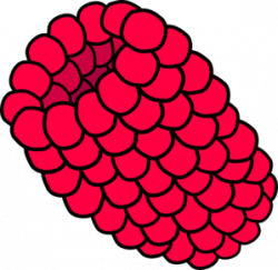 Raspberry clipart cartoon