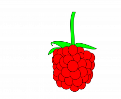 Raspberry clipart simple