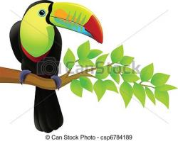 Exotic clipart exotic bird