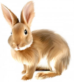 Hare clipart realistic animal