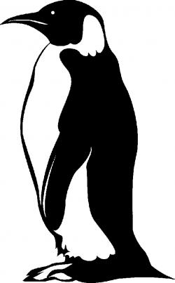 Emperor Penguin clipart black and white