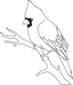 Cardinal clipart outline