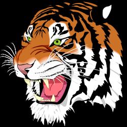 Bengal clipart fierce tiger