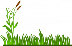 Roots clipart grass