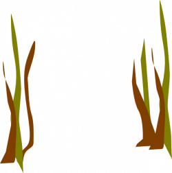 Reed clipart seaweed