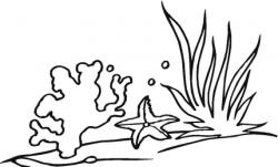 Coral Reef clipart black and white