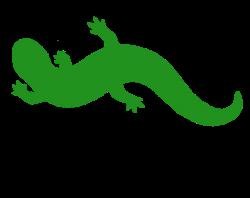 Newt clipart green