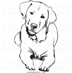 Labrador clipart black and white