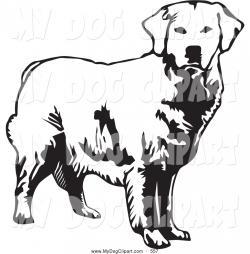 Labrador Retriever clipart white background