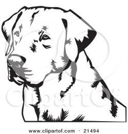 Labrador Retriever clipart head