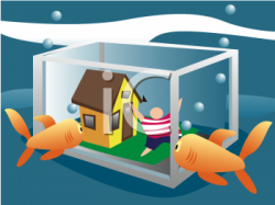 Fish Tank clipart aquarium animal