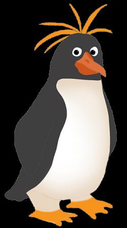 Rockhopper Penguin clipart