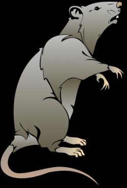 Capybara clipart adorable