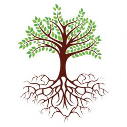 Healing clipart rooted tree